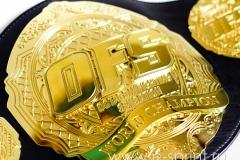пояс для чемпиона