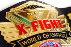 центральная эмблема на пояса чемпиона