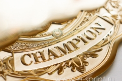 производство чемпионских поясов