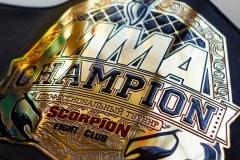 центральная эмблема пояс чемпиона