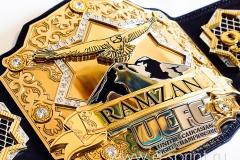 Чемпиона пояс
