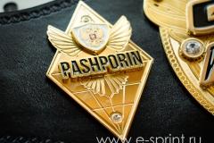 Чемпионский пояс боковая эмблема
