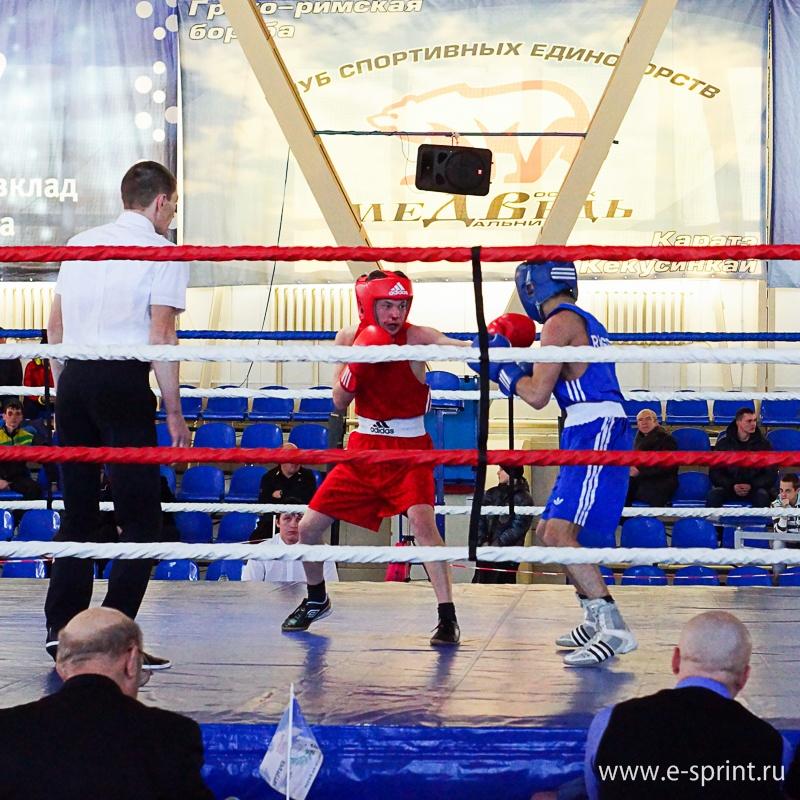 Любительский бокс фото 77918 фотография