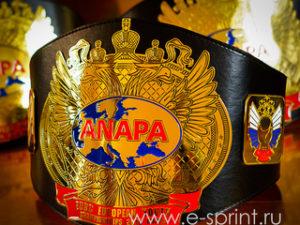 пояса чемпионские