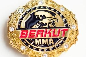 эмблема на пояс чемпиона