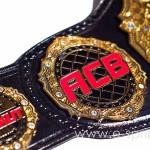 боковые эмблемы чемпионского пояса