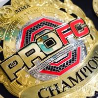 Чемпионский пояс PROFC