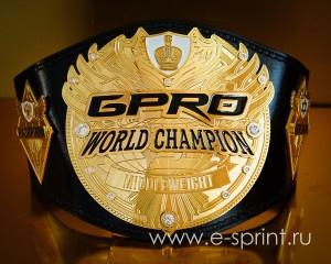 Пояс чемпиона GPRO-19
