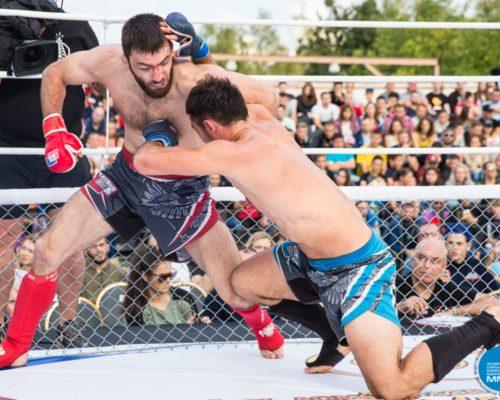 турнир бокс